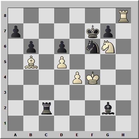 Шахматные окончания: окружение короля противника