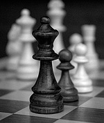 Шахматные соревнования в «Зелёном шуме»