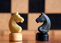 Состоялось личное первенство 2012 года поселения Московский по шахматам и шашкам среди взрослых.