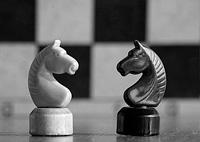 В Калининграде и Владимире, на базе информационных центров по атомной энергии, 21 декабря 2012 года, состоялся шахматный онлайн турнир «Шахматы без границ».